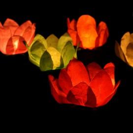 6 Candele Galleggianti forma Fiore 29 cm