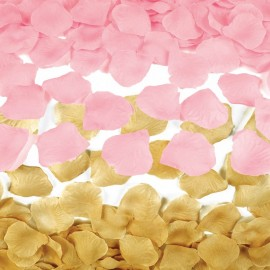 100 Petali di Rosa