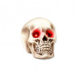 Cranio Occhi Luminosi