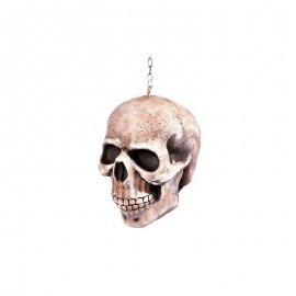 Cranio con Catena
