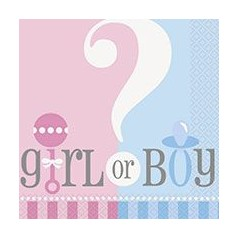 Baby Shower Gender Reveal