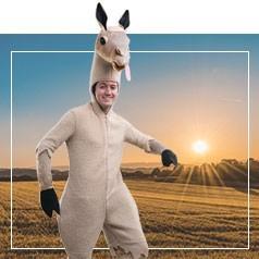 Costumi Lama