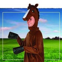 Costumi Cavallo