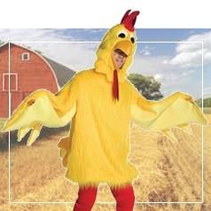 Costumi da Pollo