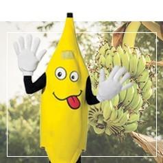 Costumi Banana